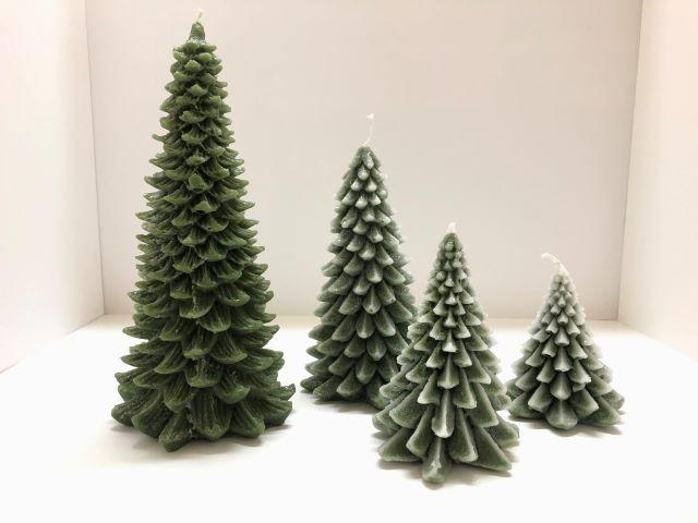 pino verde brinato